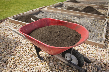 Wheelbarrow full of compost dirt sitting in a backyard garden ready to help grow healthy vegetables