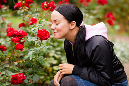Young woman sniffing roses in a garden