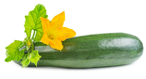 Zucchini with flower